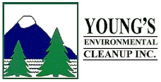 Young's Environmental